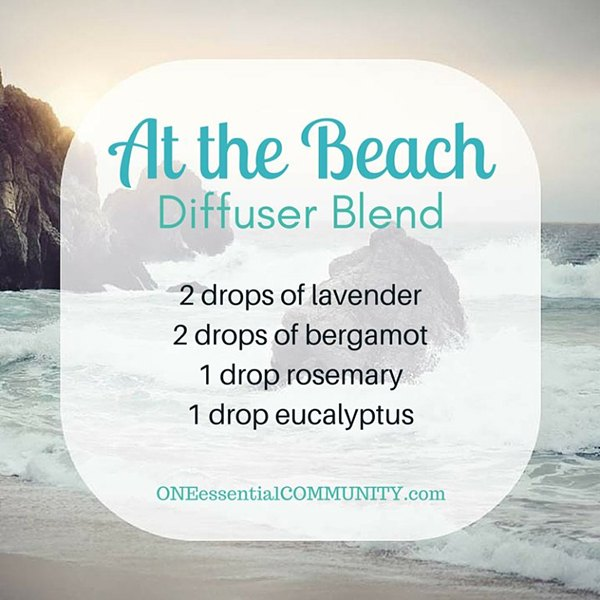 At the Beach Diffuser Blend via ONE essential COMMUNITY