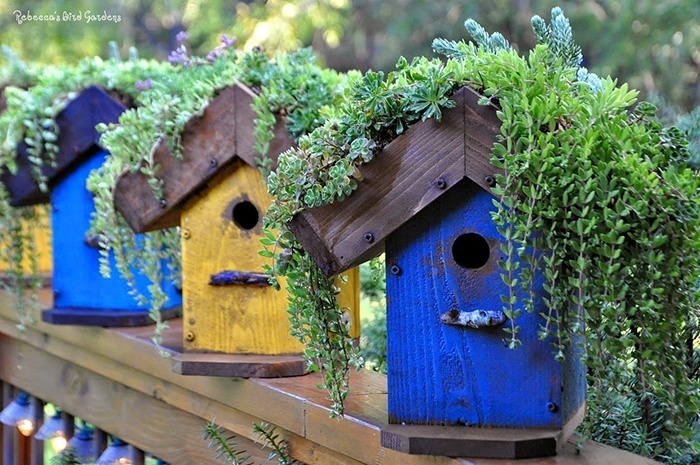 DIY Birdhouse via Rebecca's Bird Gardens