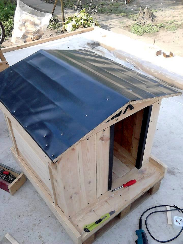 Pallet Dog House Plans | How To Build A Pallet Dog House In A Perfect Manner