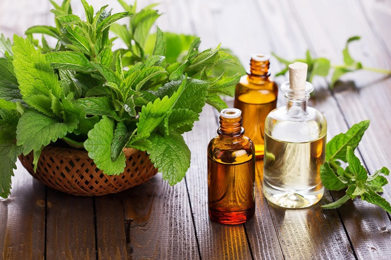 Peppermint Essential Oil via JUJU AROMA