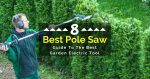 8 Best Pole Saw