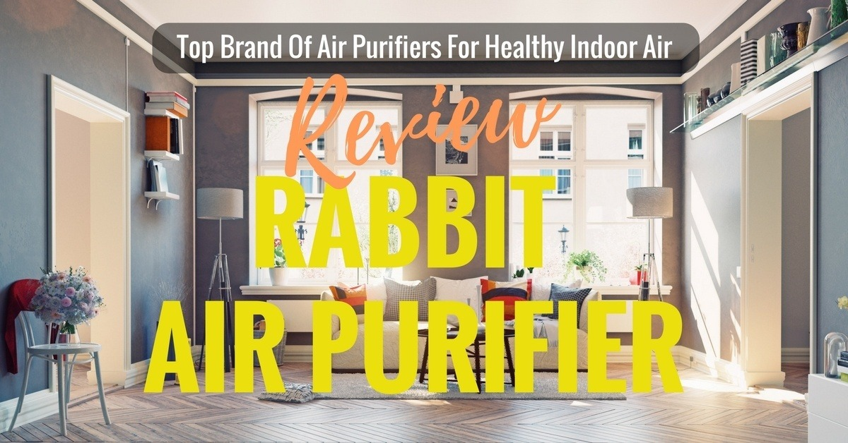 Since Then This Company Has Been A Trusted Name In Air Purifiers Rabbit Purifier Reviews Post Will Show You Just