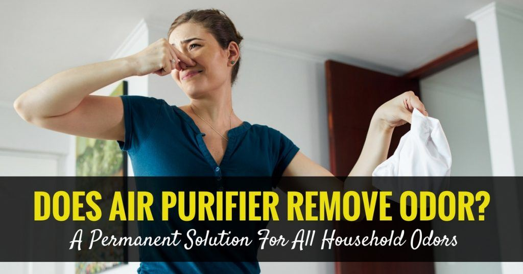 does air purifier remove odor a permanent solution for