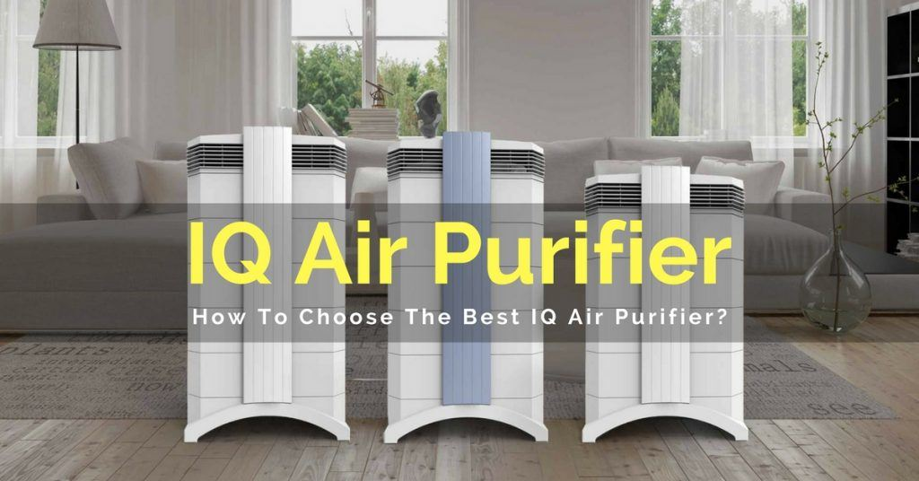 IQ Air Purifier