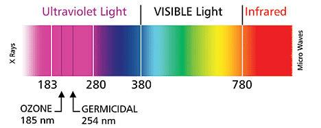 Ultraviolet Light via Vital Air Solutions