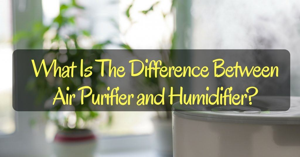 What Is The Difference Between Air Purifier and Humidifier-